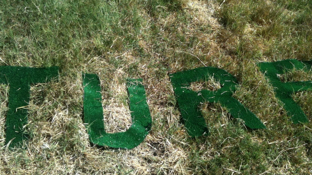 Turf; Ecological Activism and Art- exhibition and events project video thumbnail