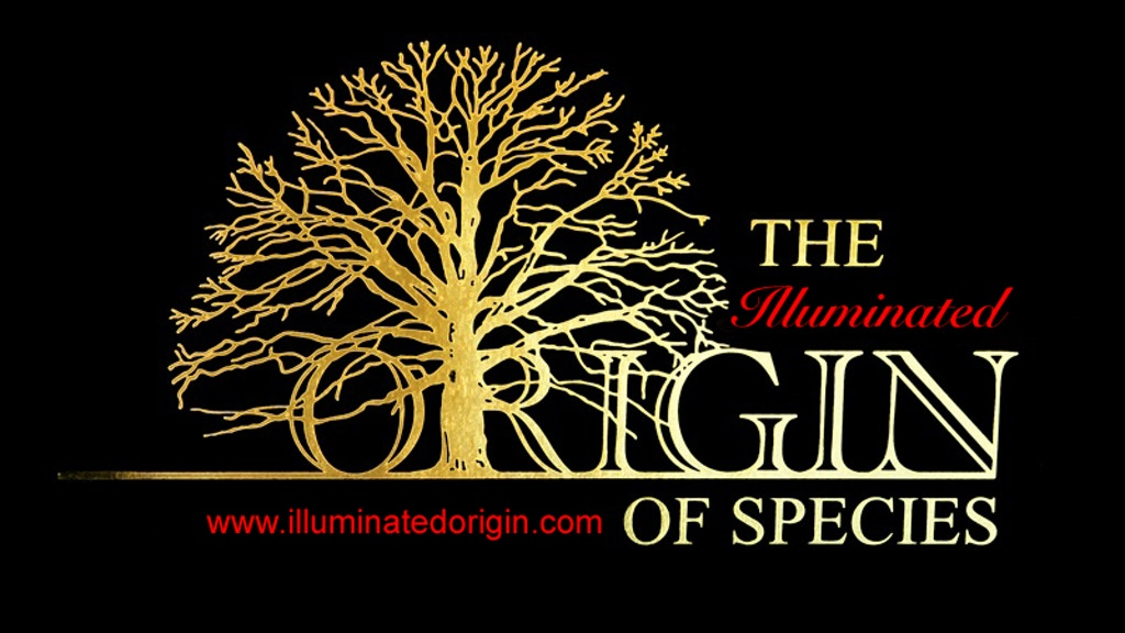 The Illuminated Origin of Species project video thumbnail