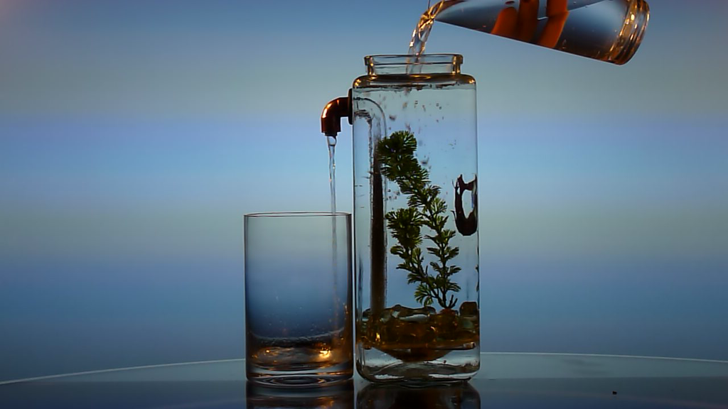 NoClean Aquariums™ - Self-Cleaning Betta Fish Tank! project video thumbnail