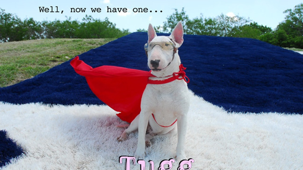 Adventures of Tugg the Bull Terrier project video thumbnail