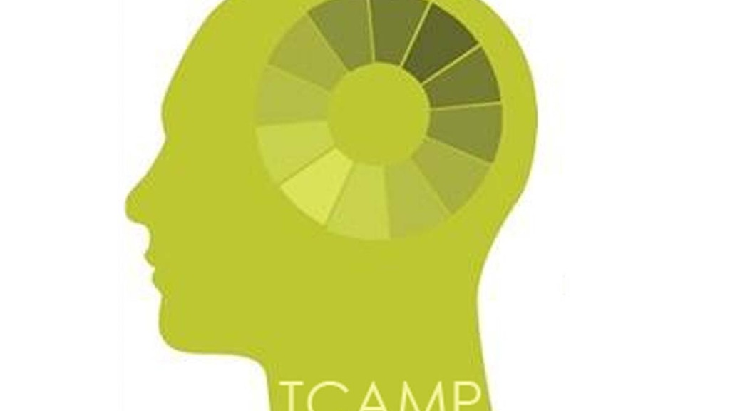 TCAMP: Transitional Creative Arts Mentoring Program project video thumbnail