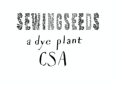 Sewings Seeds: A dye plant CSA by Owyn Ruck —Kickstarter