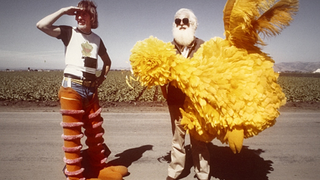 I AM BIG BIRD project video thumbnail