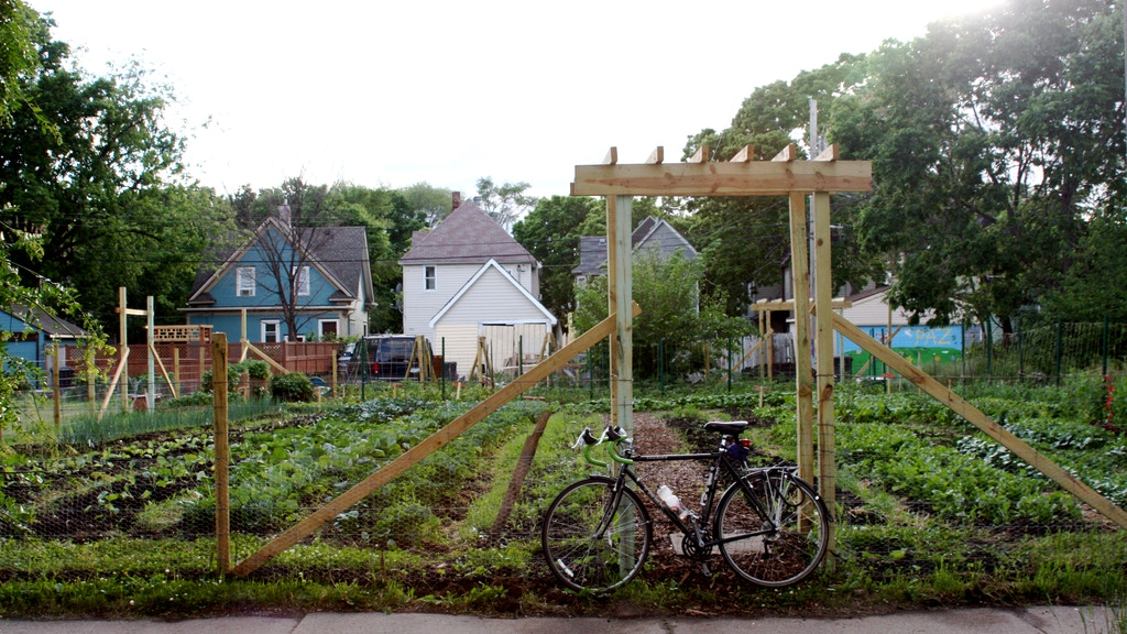 Vacant Lots to Vibrant Urban Farms project video thumbnail