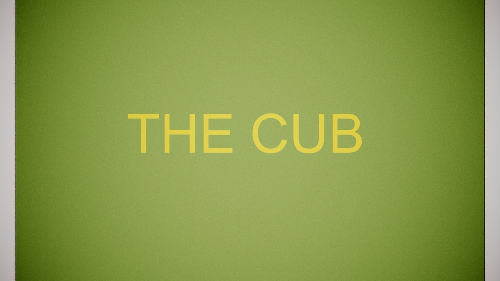 The Cub project video thumbnail