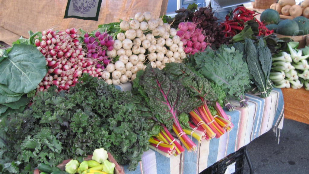 Paper Crane Farm Needs a Market Van project video thumbnail