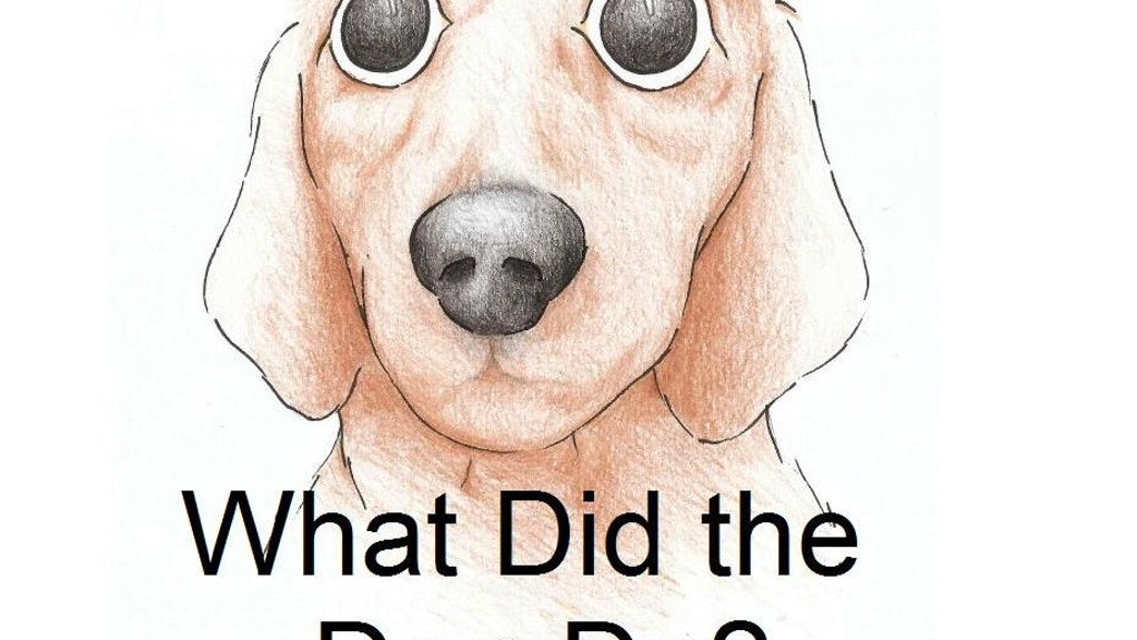 Project image for What Did the Dog Do?
