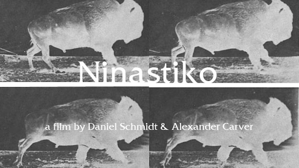 Ninastiko project video thumbnail