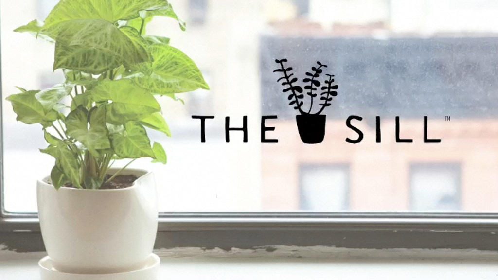 The Sill - A Plant on Every Sill. project video thumbnail