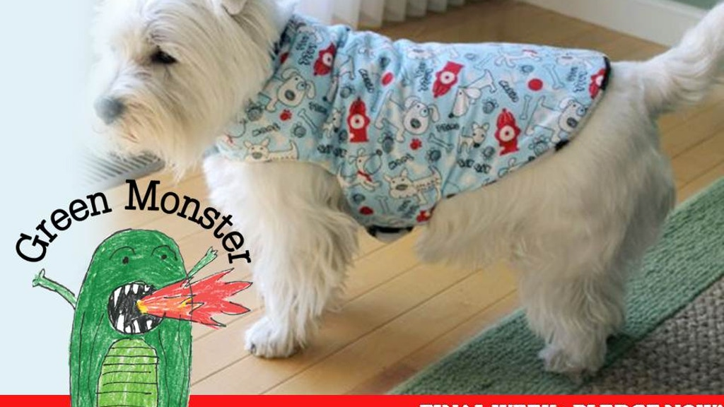 Green Monster Debuts Funktional Dogwear in Vegas! project video thumbnail