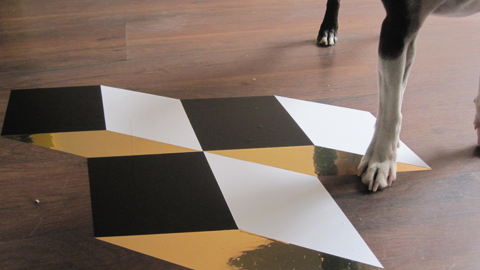 Facet removable vinyl floor tiles by sara czosnyka kickstarter facet removable vinyl floor tiles dailygadgetfo Image collections