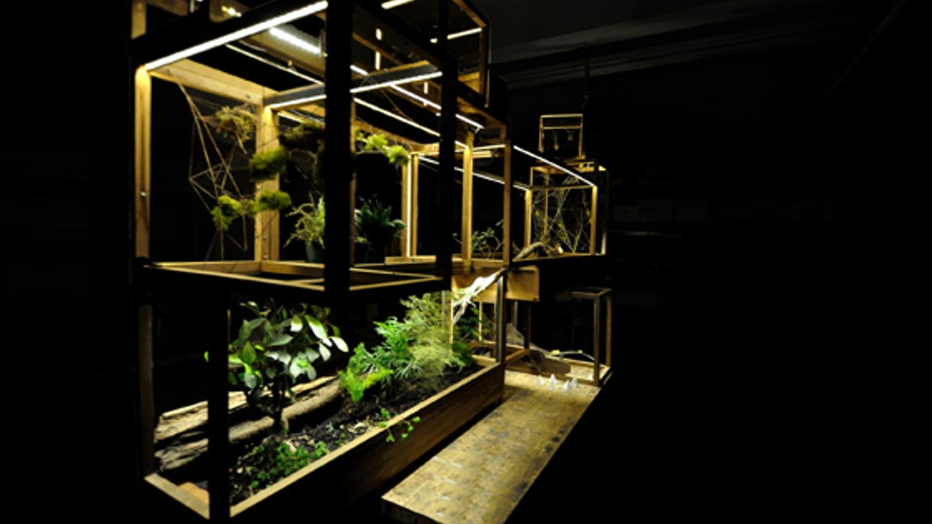 Plant-In City: Architecture and Technology for Plants. project video thumbnail