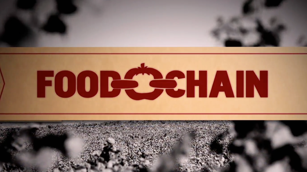Food Chain project video thumbnail