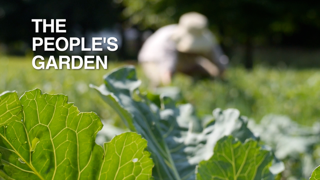 The People's Garden Project project video thumbnail