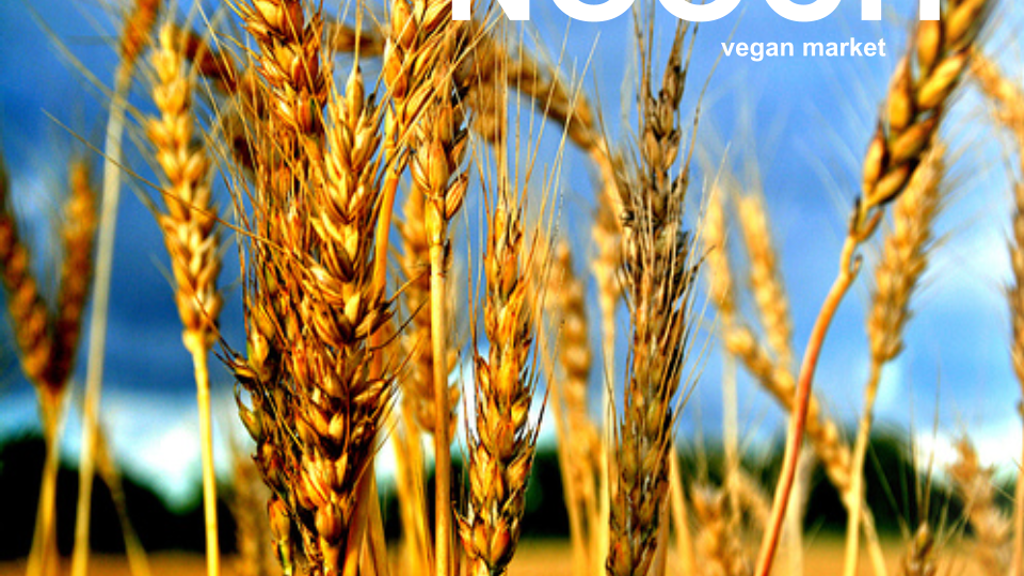 NOOCH | Vegan Market: From Table Top to Store Front. project video thumbnail