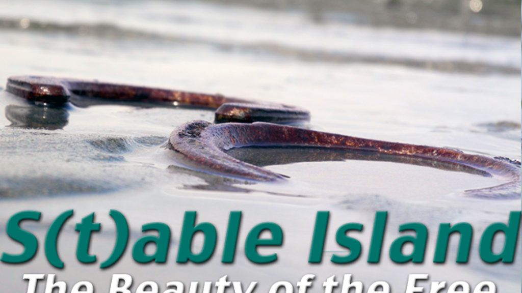 S(t)able Island - The Beauty of the Free project video thumbnail