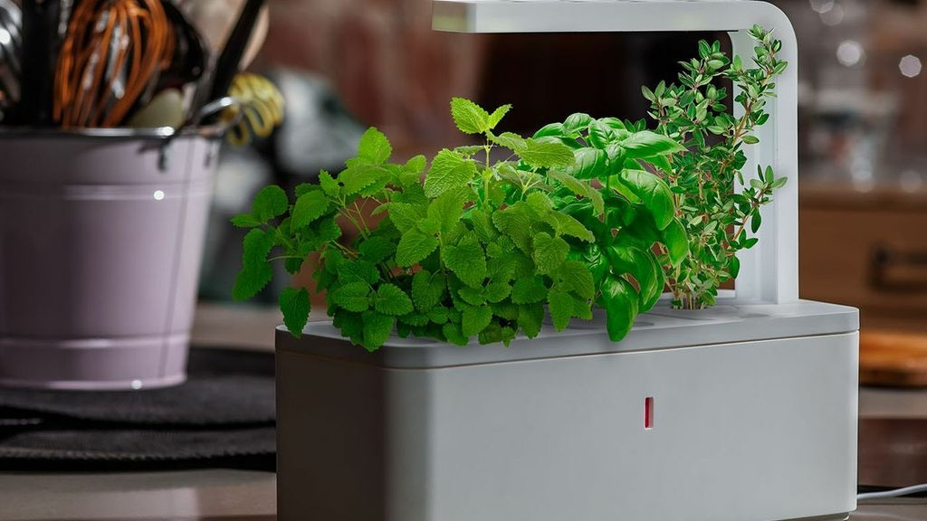 Smart Herb Garden by Click & Grow project video thumbnail