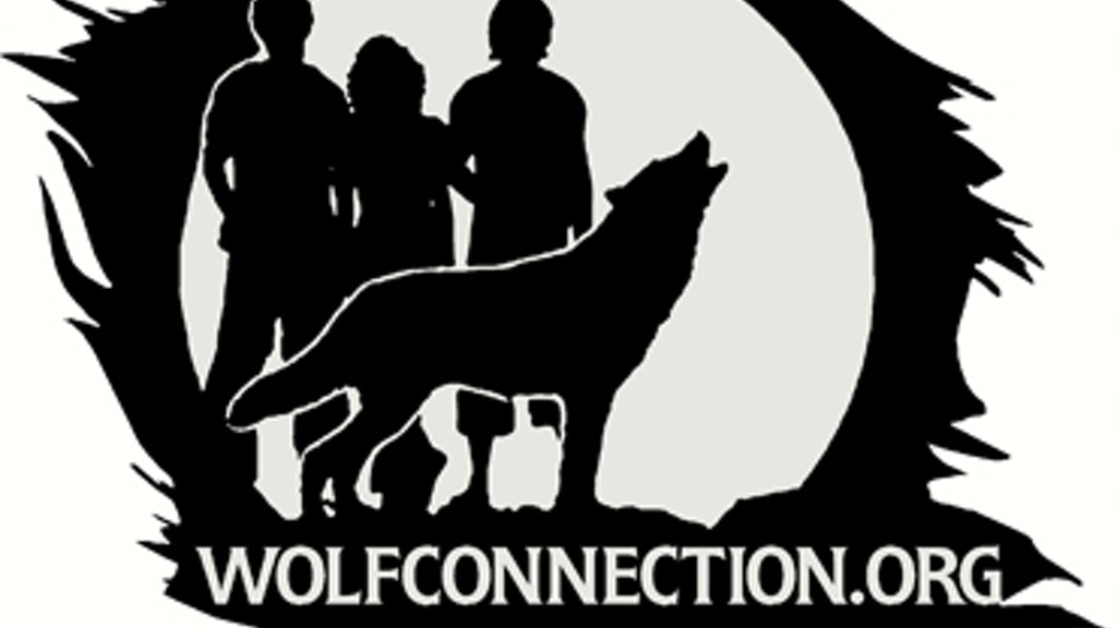 Wolf Connection & the 13 Grandmothers - Documentary project video thumbnail