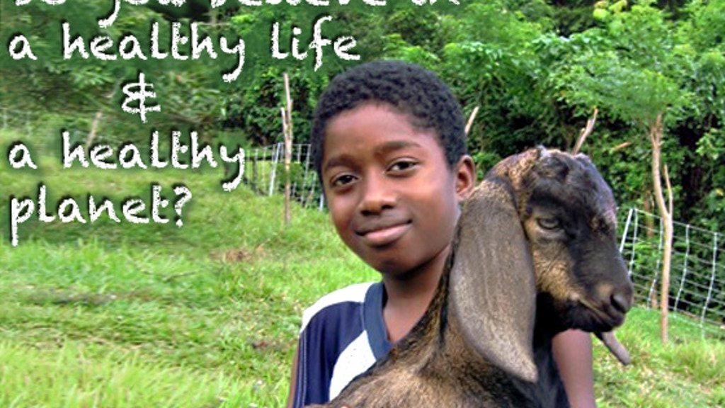 The Grenada Goat Dairy's School Project project video thumbnail