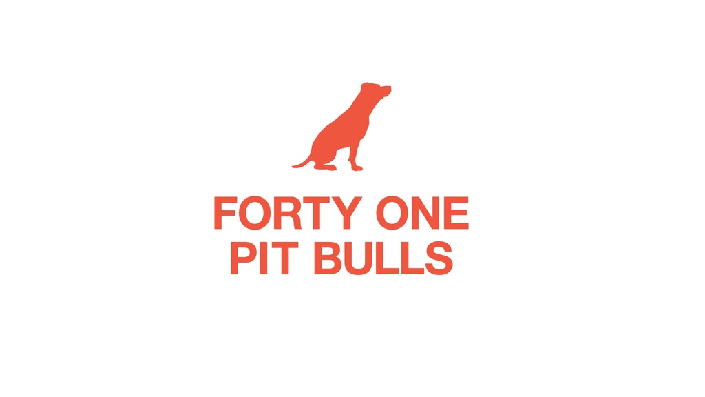 Forty one pit bulls - a little book, with a big job project video thumbnail