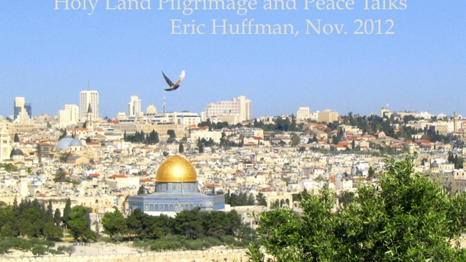 Jew Detector: Holy Land Pilgrimage And Peace Talks By Eric Huffman