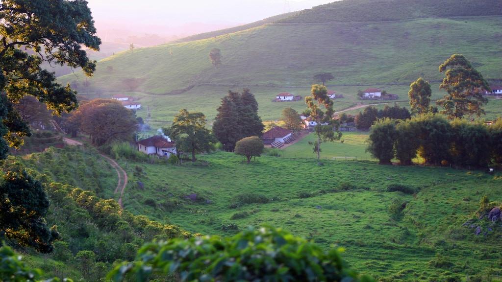 Nossa Familia Coffee: Our Farm to Cup Brazilian Espresso Bar project video thumbnail