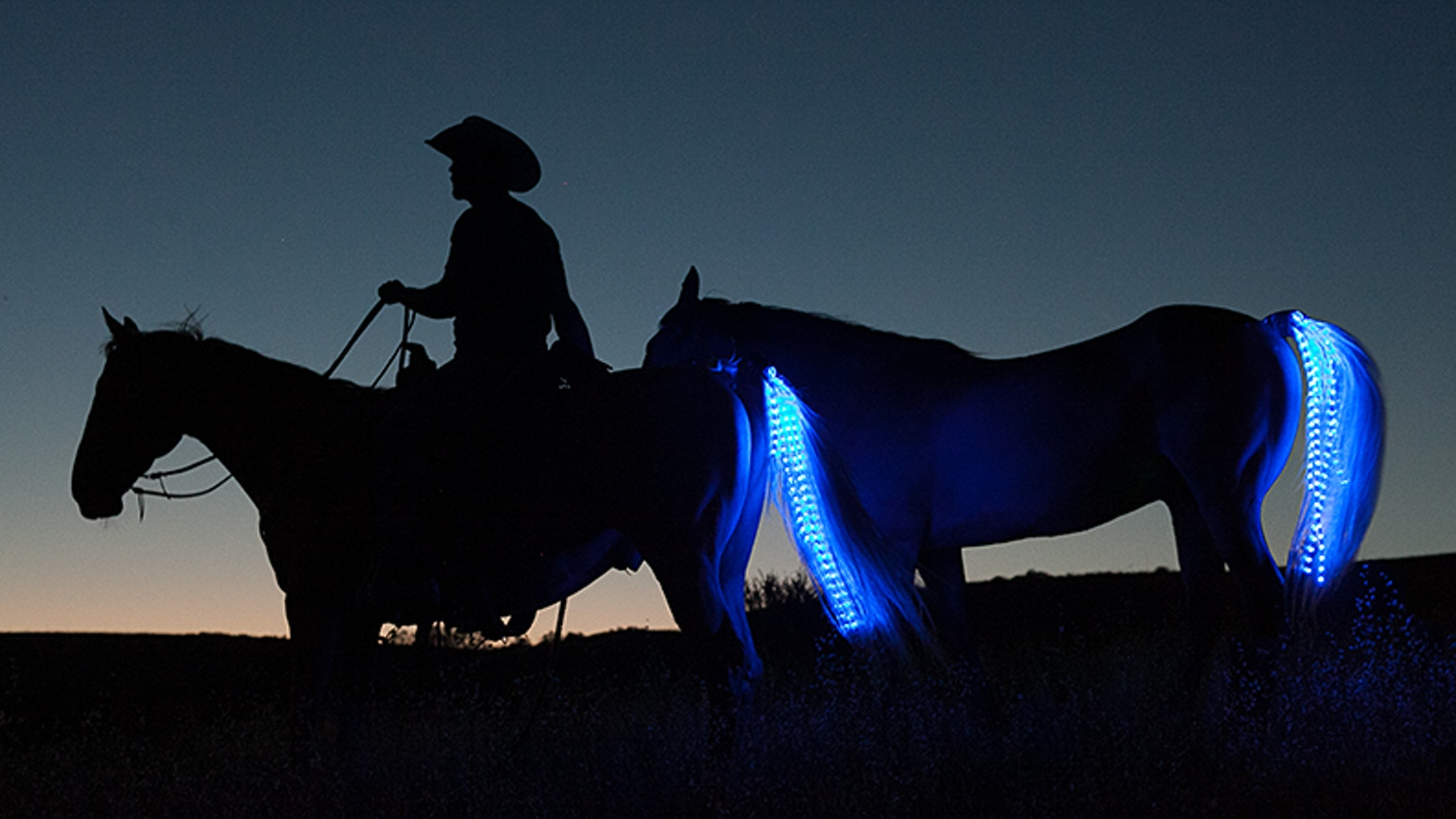 Introducing the Tail Lights Rider safety system!  Our goal is to make a horse/rider safety lighting smaller and more affordable.