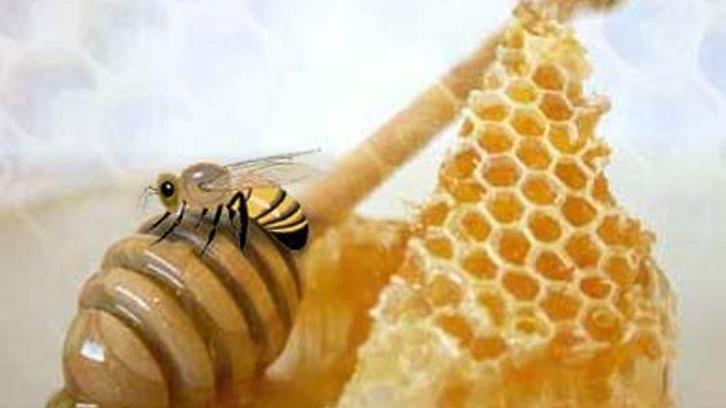 Help Support Beekeeping, Bees Have A Lot To Teach Us project video thumbnail