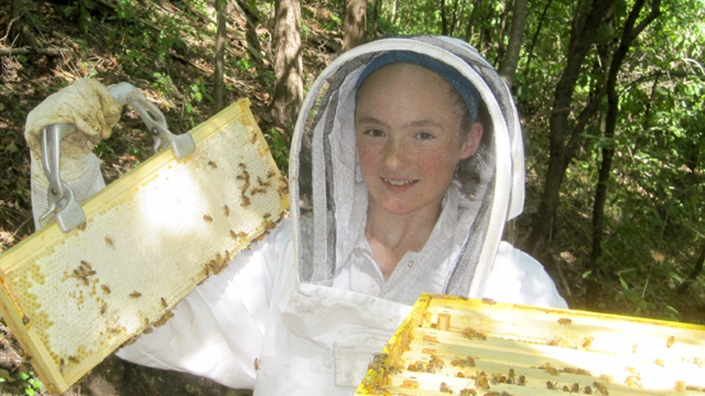 The Story of a Blossoming Honey Business project video thumbnail