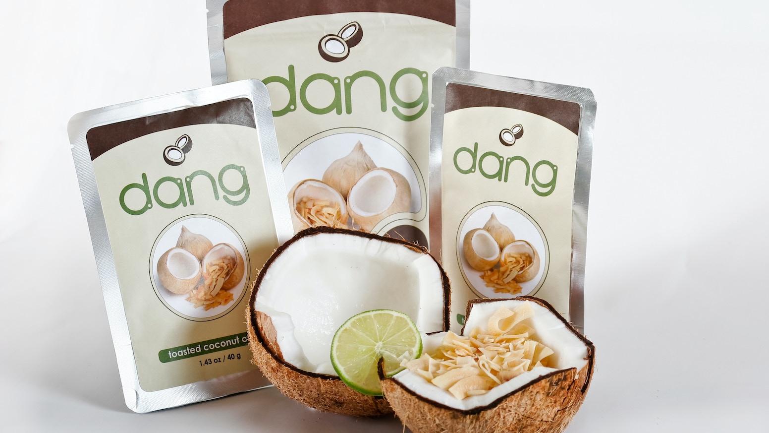 Dang Coconut Chips by VincentKit — Kickstarter