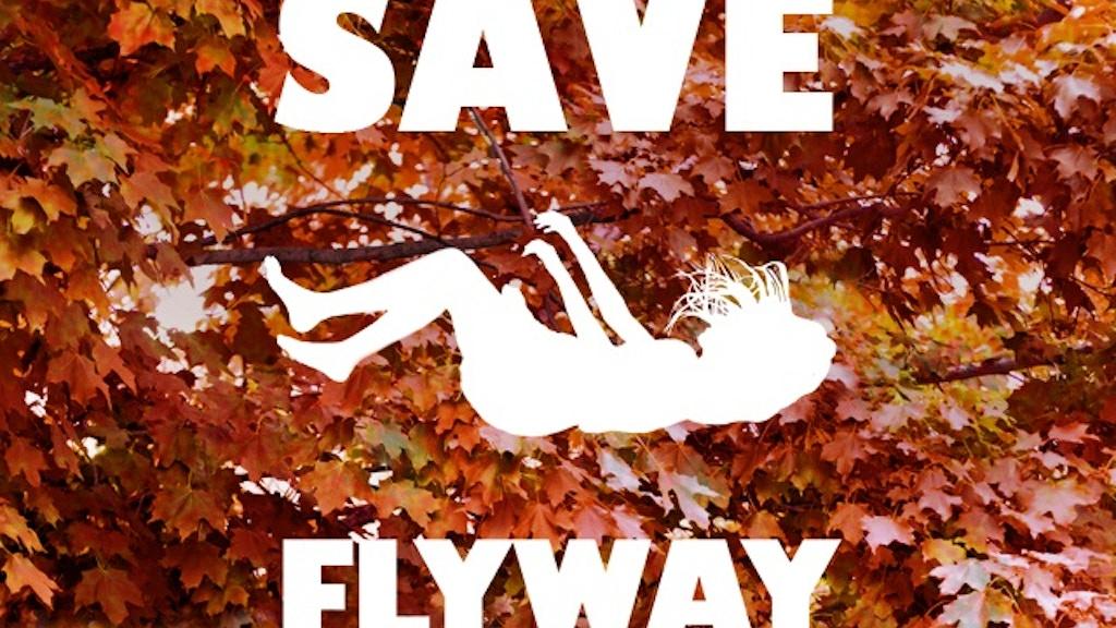 Save Flyway! project video thumbnail