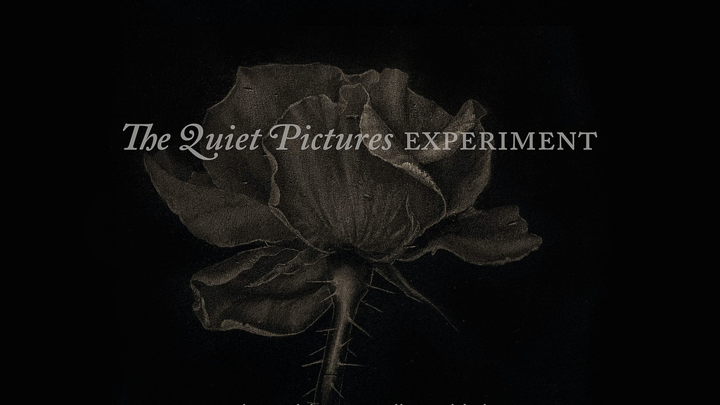 The Quiet Pictures Experiment project video thumbnail