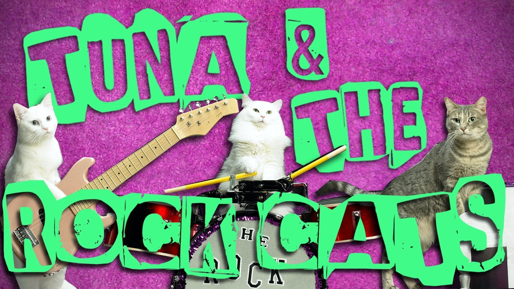 Amazing Acro-Cats and Rock-Cats Purr-fect Tour Bus project video thumbnail