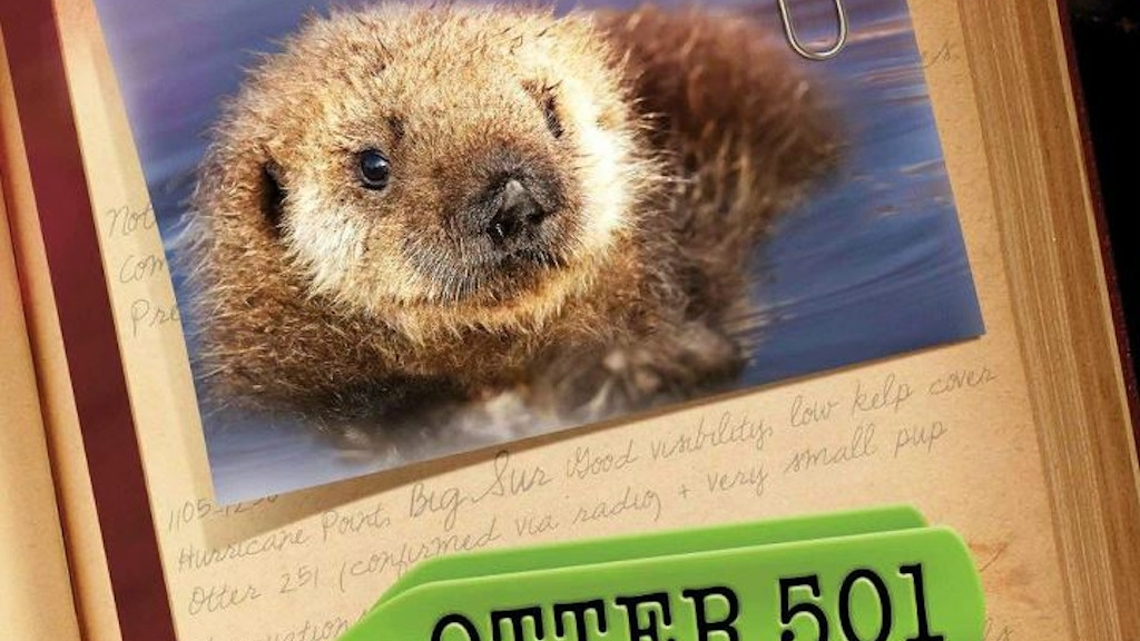 Bring OTTER 501 to a Town Near You! project video thumbnail
