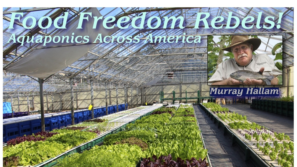 "Aquaponics Across America  ""Food Freedom Rebels"" Documentary project video thumbnail"