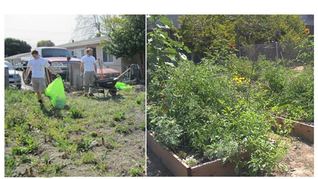 Garden To Table By Zach Lewis Kickstarter