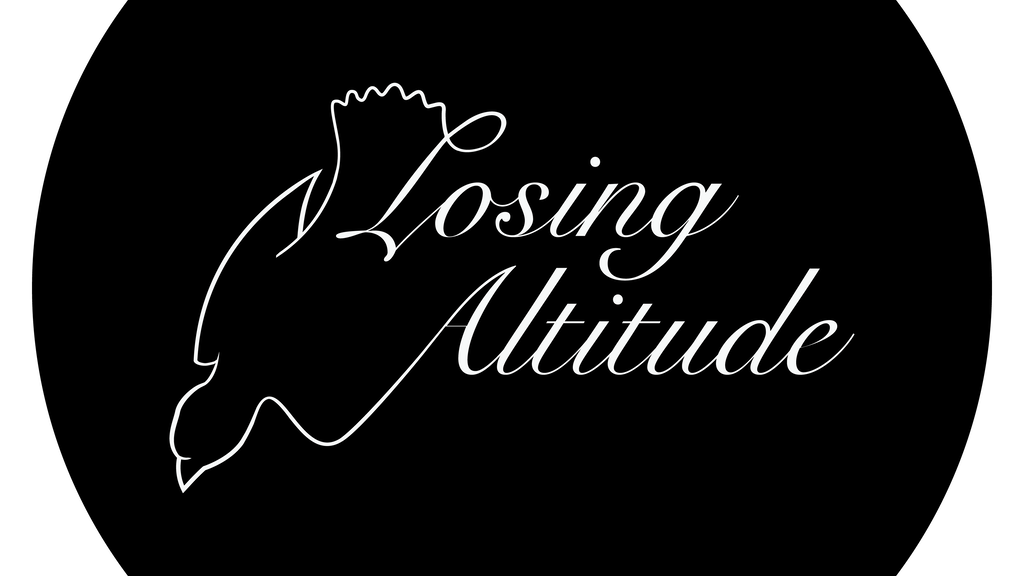 Losing Altitude- A collaborative art book project video thumbnail
