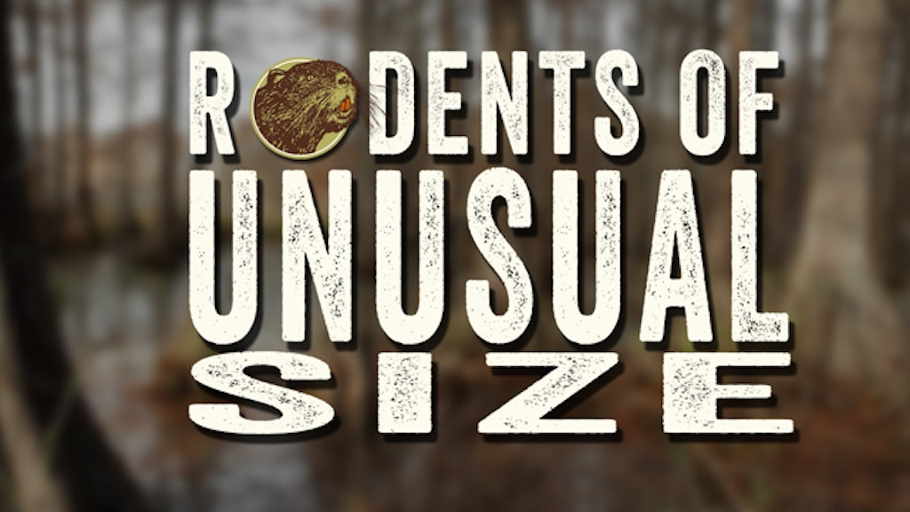 """Rodents of Unusual Size"" project video thumbnail"