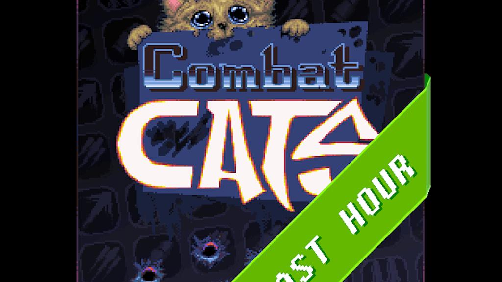 Combat Cats project video thumbnail