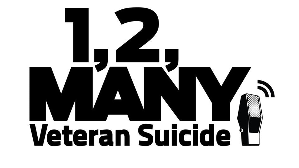 1, 2, Many: Veteran Suicide project video thumbnail