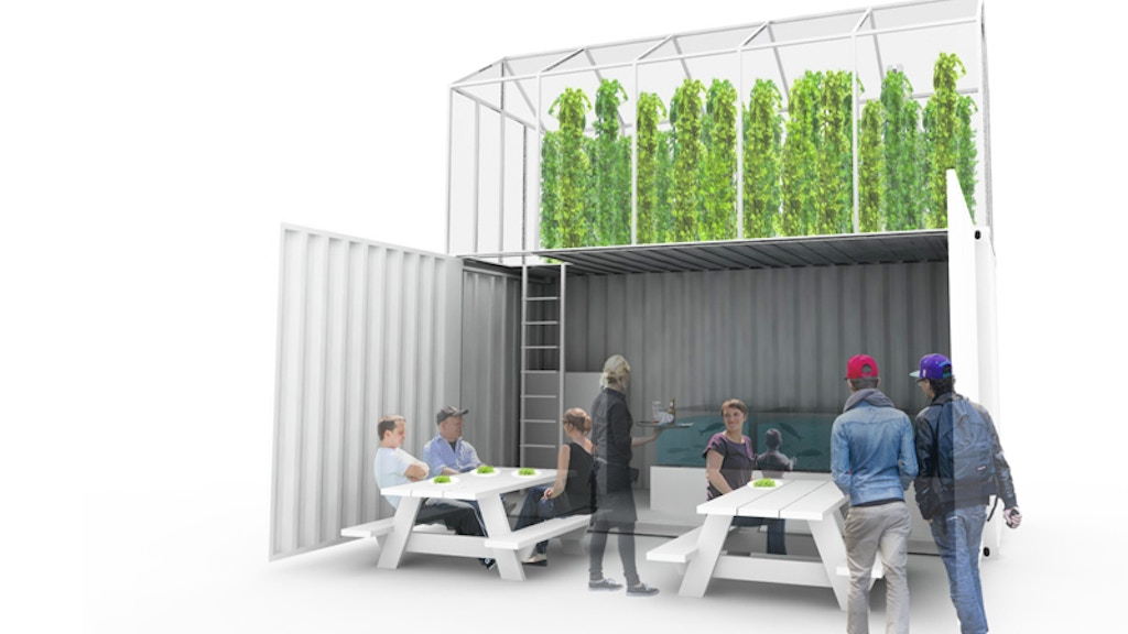 GrowUp! An aquaponic urban farm for London project video thumbnail