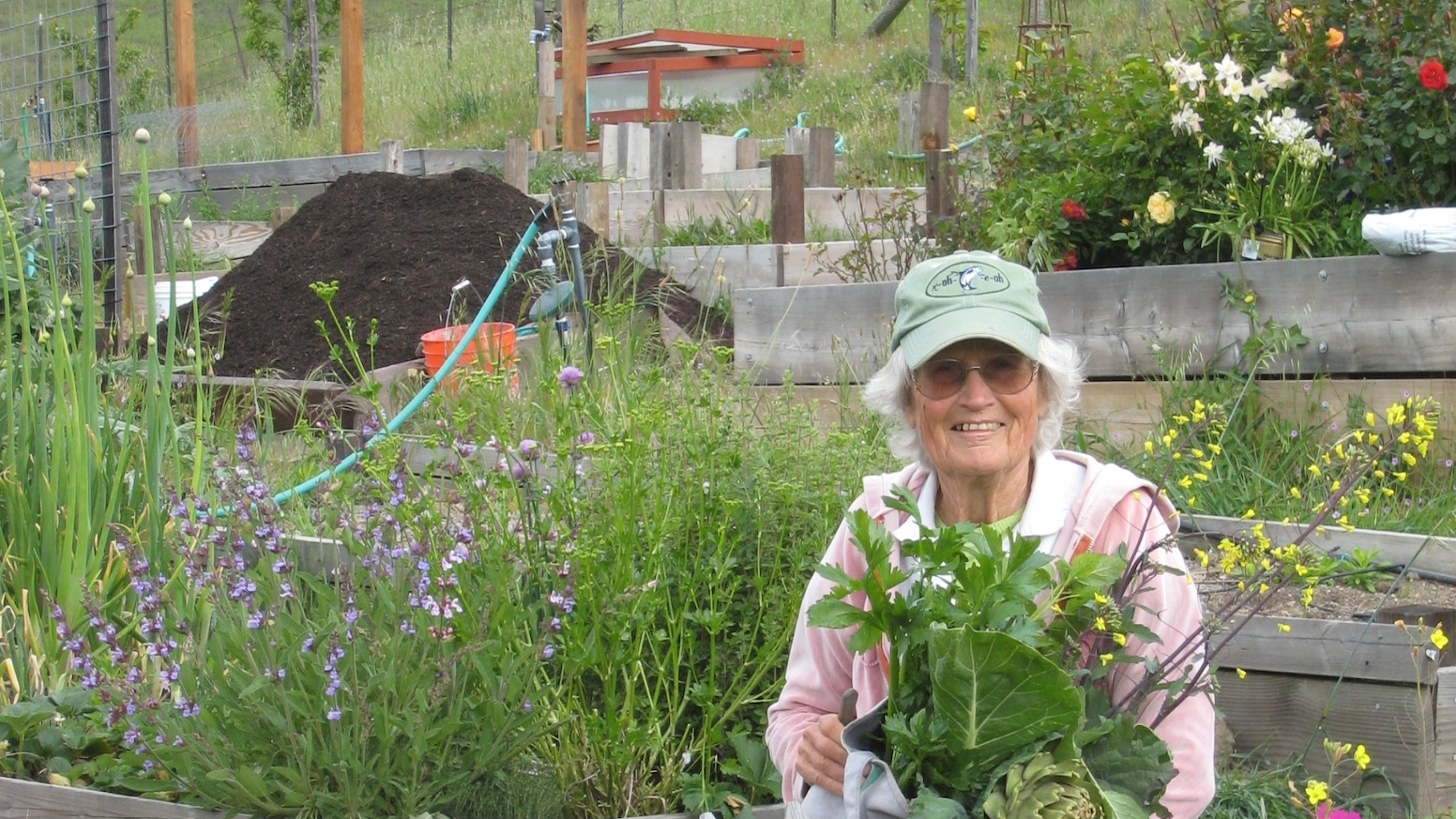 Herbal Plant Project by SGV Community Garden-Mary St Pierre