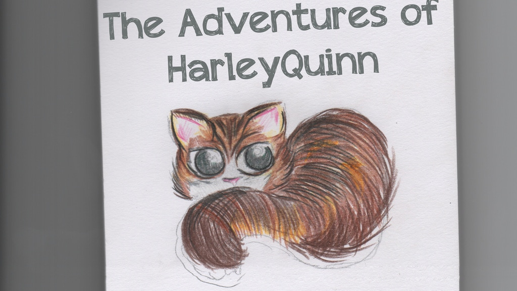 The Adventures of HarleyQuinn project video thumbnail