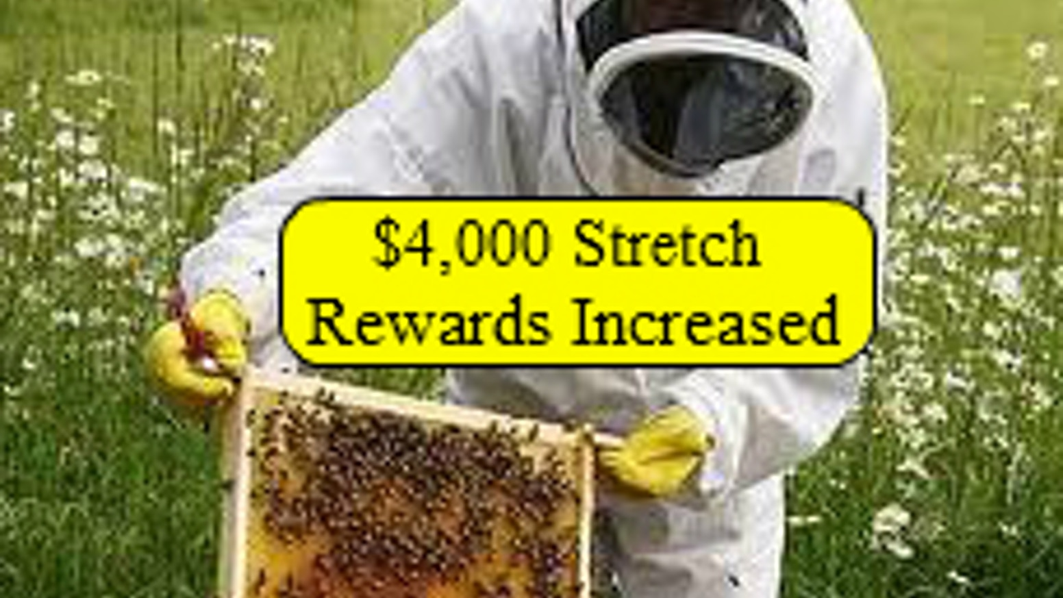 Homestead Honey Farm : bee yard expansion and honey stand by
