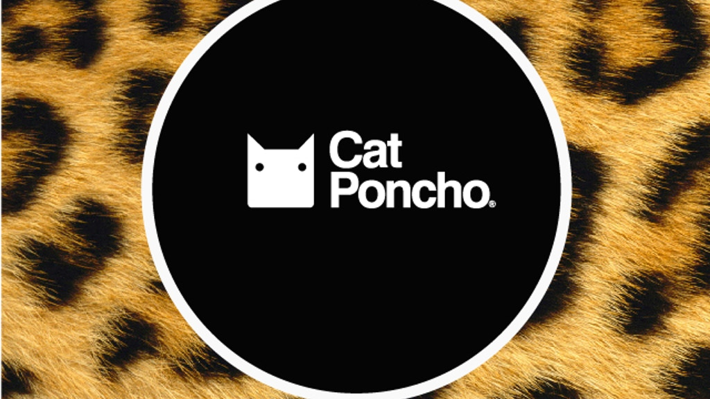 Cat Poncho project video thumbnail