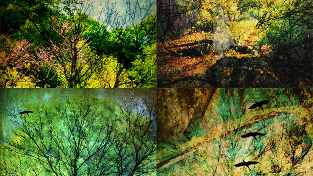 The Never-Ending Wood: Part of 'An Enchanted Arboretum' project video thumbnail