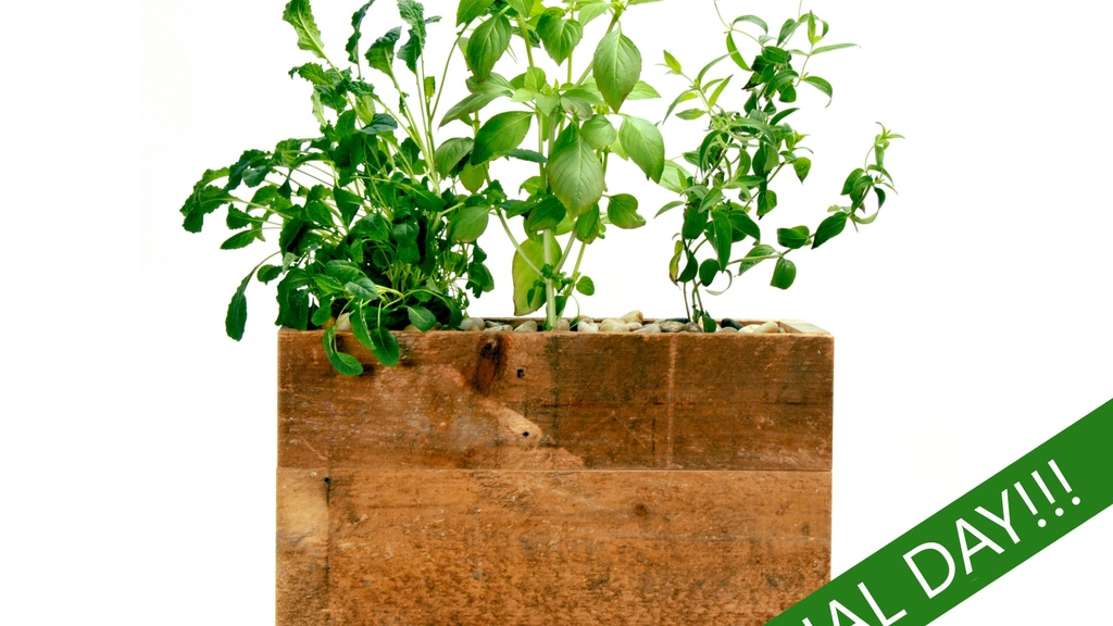 Attractive Hydroponic Planter for Herbs, Produce & Flowers project video thumbnail