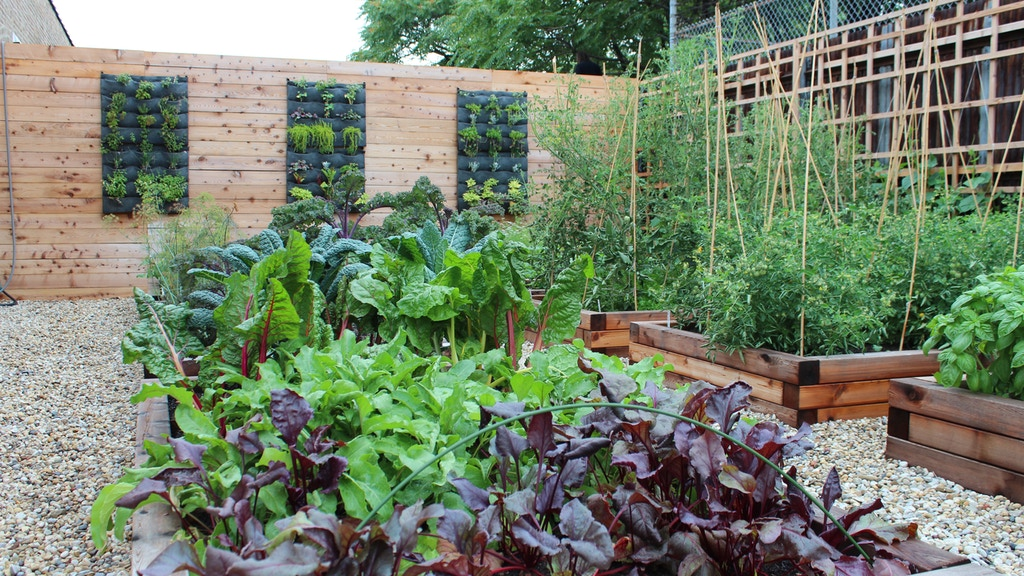Project image for Urban Farm Dinners and Youth Gardening Programs in Chicago