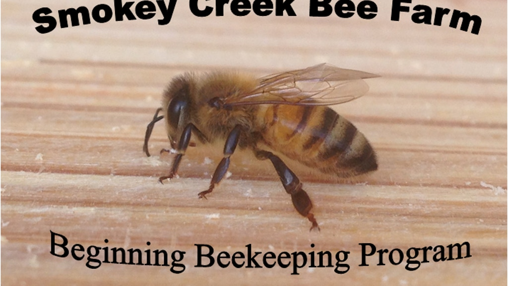 Building Beekeeping Equipment for beginners project video thumbnail