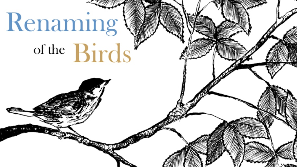 Renaming of the Birds project video thumbnail